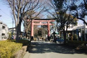 さいたま市氷川神社の参道