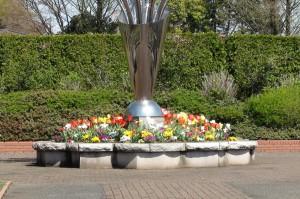 ネモフィラ-さいたま市、大宮花の丘公園