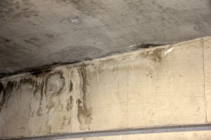 雨漏り補修の見積書(防水工事)を提出-上尾市B社の社屋