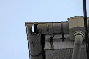 外壁塗装、屋根塗装、コーキングの現状調査-さいたま市緑区SA様