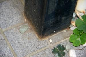 アパートの階段の現状調査-さいたま市浦和区Uアパート