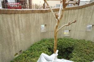 さいたま市中央区のW様に塀塗装の見積説明
