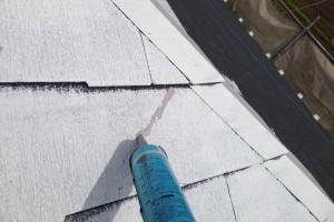 さいたま市桜区でE様邸の屋根塗装