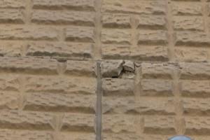 さいたま市南区のK様から外壁塗装の見積ご依頼