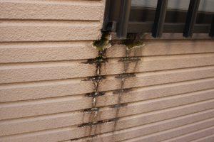 さいたま市緑区のO様より外壁塗装の見積依頼